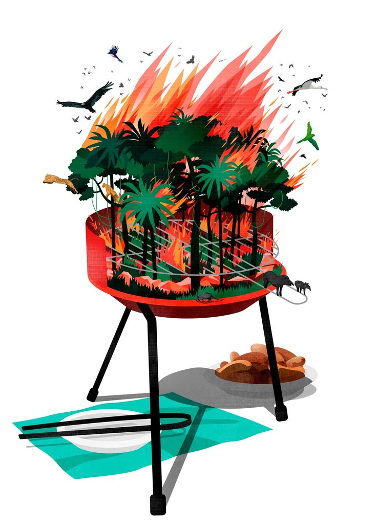 Paraguayan forest's ecosystem is endangered by economic coal production / Die Zeit ©Benedetto Cristofani, all right reserved #Diezeit #ecosystem #environment #ecology #barbecue #granchaco #paraguay #forest #coal #animals #illustration #editorial #editorialillustration #conceptual #conceptualillustration #graphic #graphicdesign