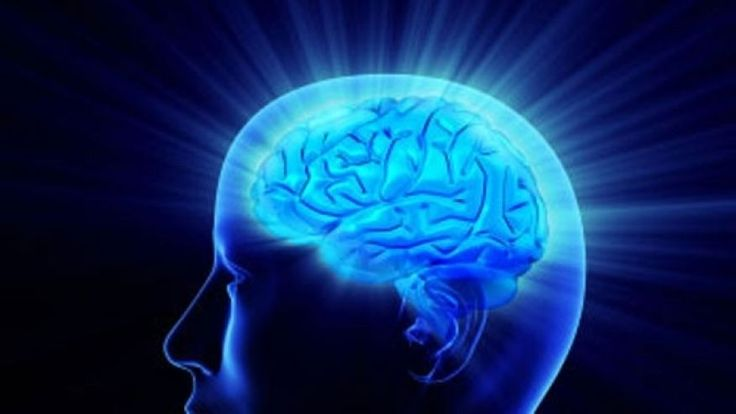 Brain fog: Ways to combat short term memory loss | Fox News