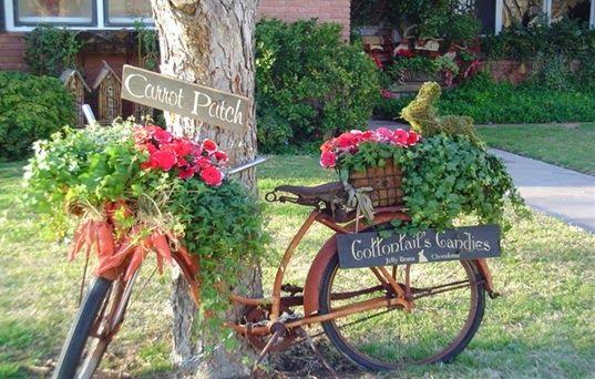 Bicicleta plantas.