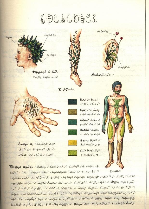 codex seraphinianus pdf free download