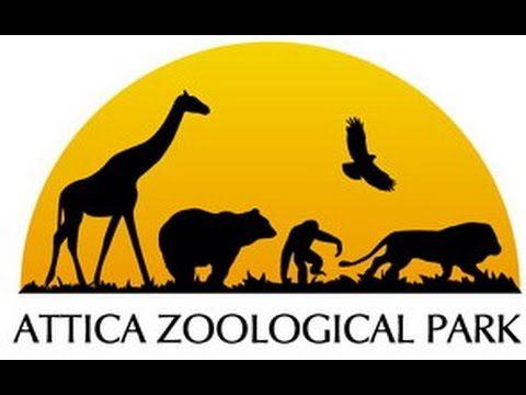 Attica Zoological Park Greece 2015
