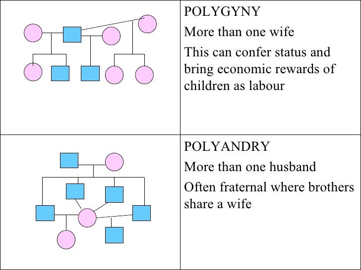 polyandry dating website Looking to find available polyamorists online meet the polyamorists here on our website and make your love life complete with just a couple of mouse clicks, polyamory dating site.