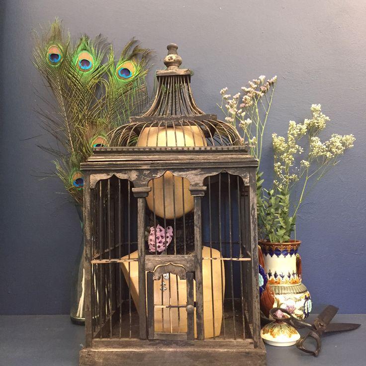 My Wednesday Still Life. #moody #moodywednesday #birdcage #faffing #stilllife