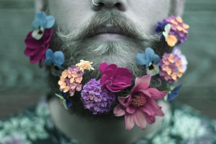 """""""A flower or two, from us to you"""". The Gay Beards"""
