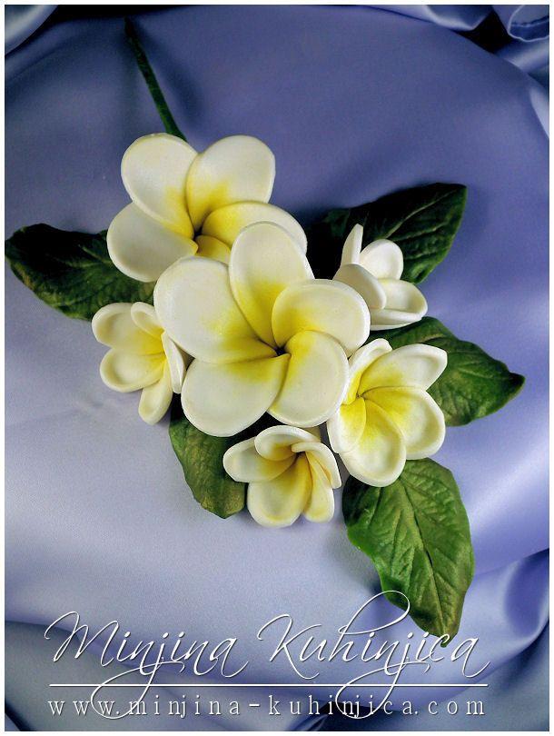 Edible Frangipani Cake Decorations