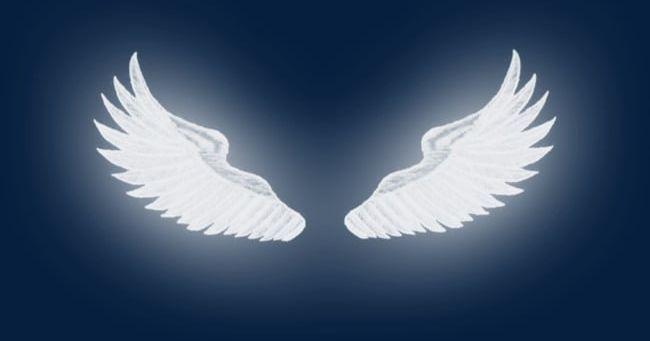 Luminous Wings Png Angel Angel Wings Feather Luminous Clipart White Wings Png Angel Wings Background Angel Wings Png