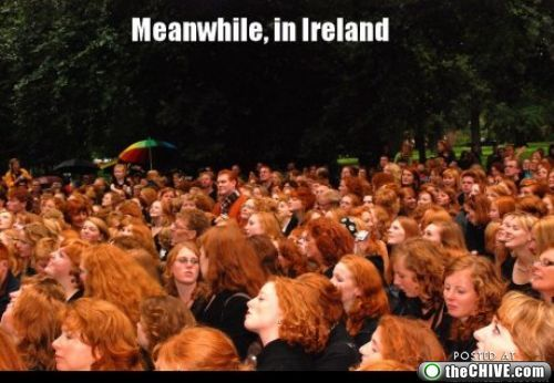 ... is a ginger paradi... Michael Fassbender