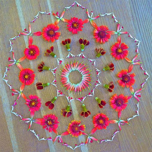 Mandalas are Key for your Mind-- DrewdruDrew.Com  If you can make a successful one, it really sets your Soul at ease.  I cannot explain it, but I will testify to the power of the Mandala.  That and Walking Prayer.  Flower mandalas by artist Kathy Klein