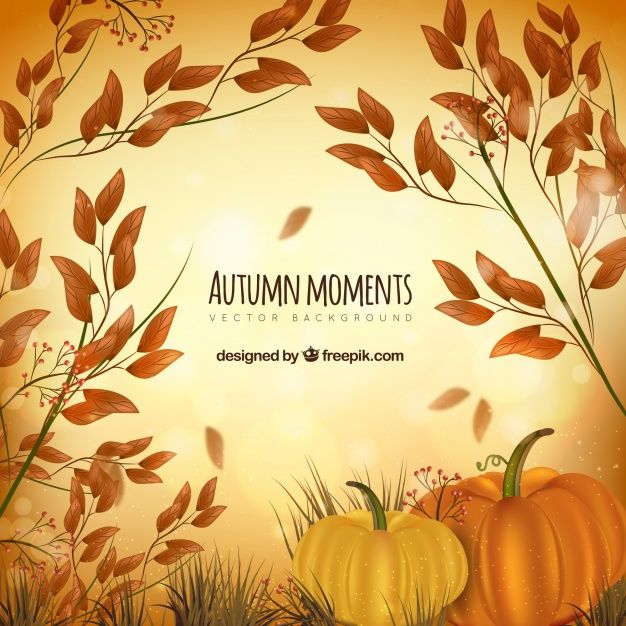 Free vector Artistic autumnal composition with realistic style #22815
