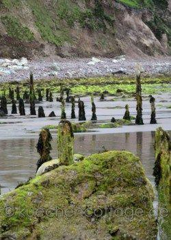 Rossbeigh Beach (Ring of Kerry, County Kerry) #rossbeighbeach #beach #urlaub #rundreise #reise #irland #traumreise #strand #fotografie #blog