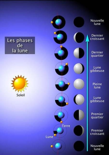 Phases de la lune                                                                                                                                                      Plus