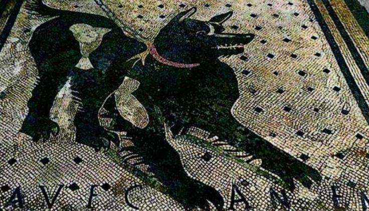 Pompeii's 'Cave Canem' mosaic restored