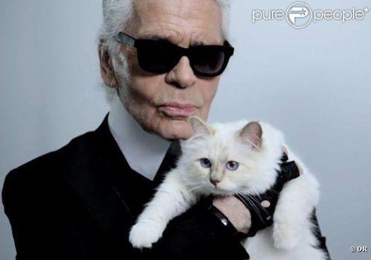 Karl Lagerfeld et son chat Choupette