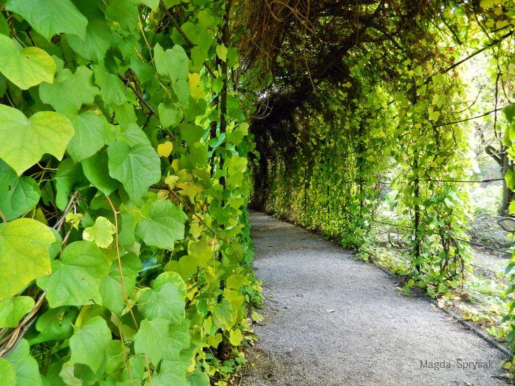 Botanical Garden Warsaw