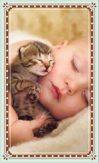 Tiny kitten sleeping with child.