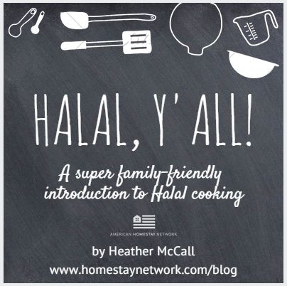 Ever wondered what #Halal cooking is? One hostess' journey towards cooking Halal, y'all. // http://ow.ly/KWsm2