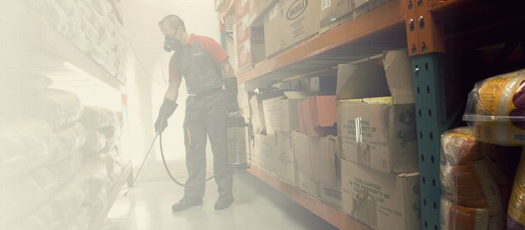 Mosquito foggers are one of the most efficient way how to get rid of mosquitoes and many other pests, however, fogging your area with a mosquito fogger to get rid of your unwanted pest guests isn't…