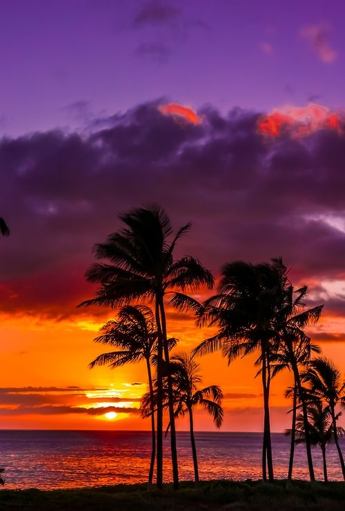 Sunset, in Hawaii...