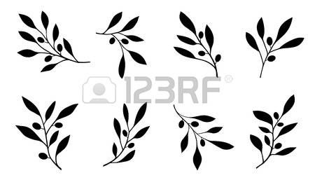 olive branch on the white background Stock Vector