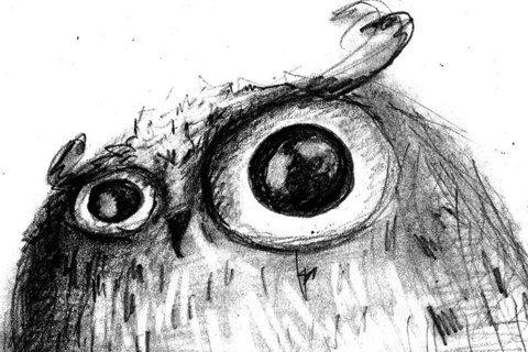 320 Сова. Рисунок Кати Чуйковой