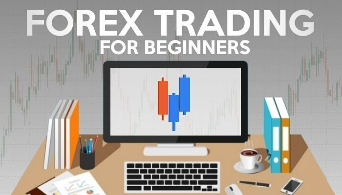 training for forex