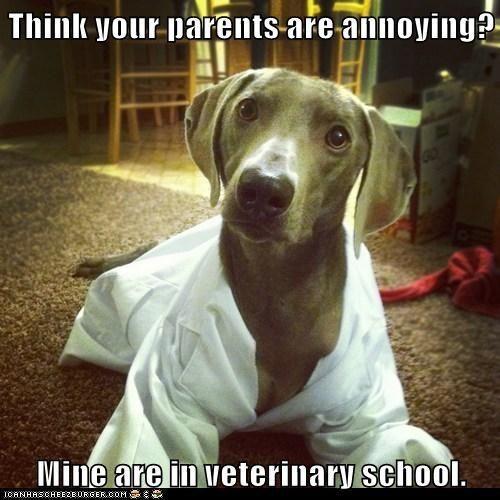 Not in very school, but veterinary technician school! But I totally get it lol