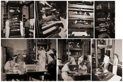 multiplane large - Awesome Facts You Can Learn From Studying Walt Disney's Multiplane Camera - www.wdwradio.com