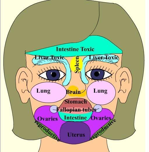 Acne Face Mapping, What Your Body Is Telling You. - Diet & holistic health - Forums