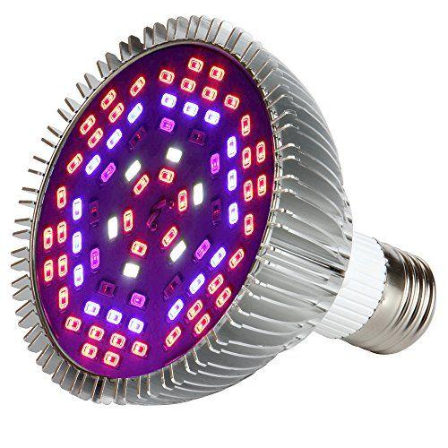 25+ trending Grow light bulbs ideas on Pinterest | Grow ...