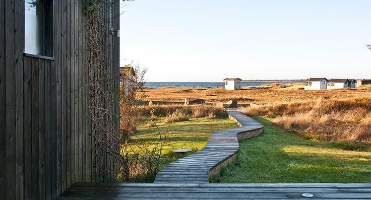 path to the beach