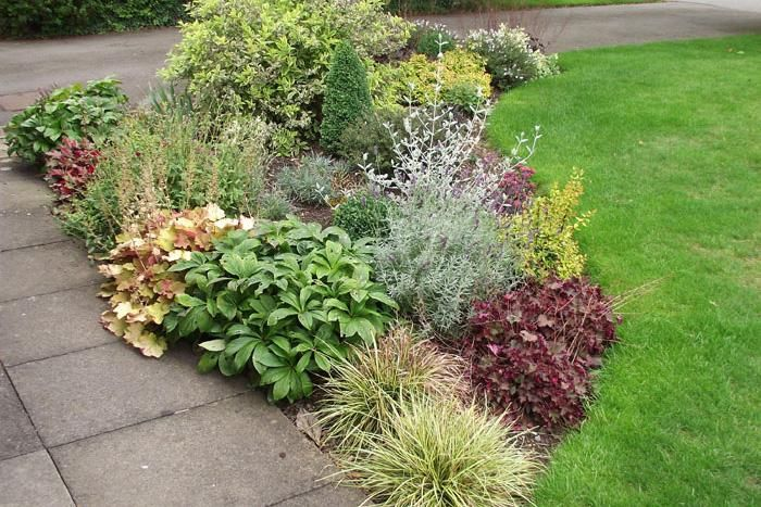 Shrub border plans small garden border in leicestershire for Garden border plant designs