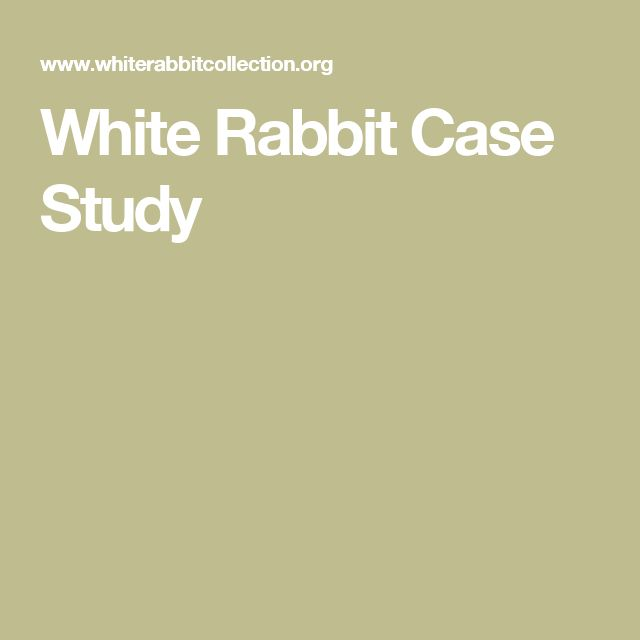 White Rabbit Case Study