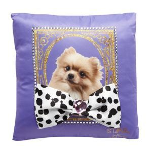 Star by Julien Macdonald Designer purple dog embellished cushion- at Debenhams Mobile