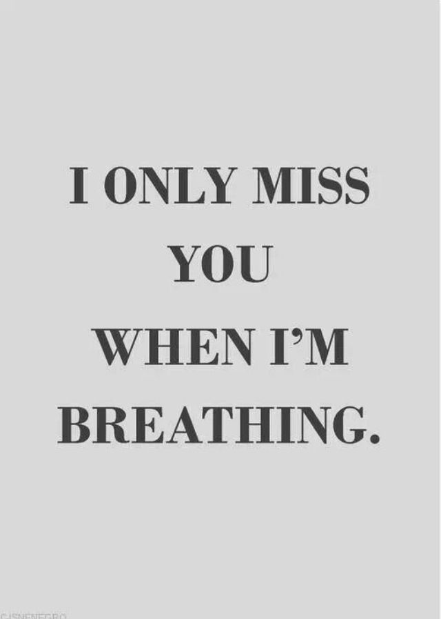 Nope I held my breath for a minute and I still missed him.