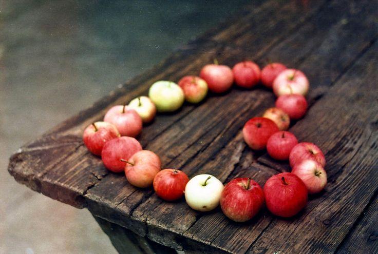 Michigan apples...yum!    (by Natalia Romanova)