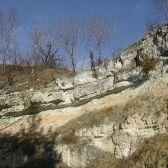 Dunaalmási kőfejtők természetvédelmi terület