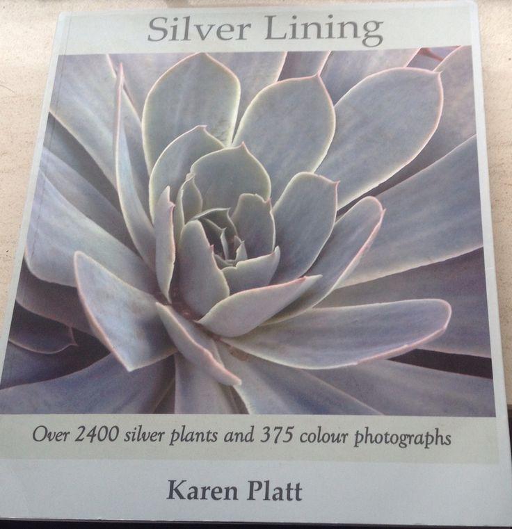 Karen Platt - Silver Lining