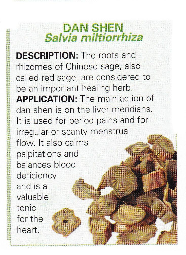 Chinese Herb - DAN SHEN  - Salvia Miltiorrhiza  Chinese Sage root