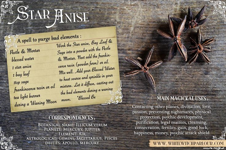STAR ANISE, magic, magick, white, witch, spell, correspondences, uses, herbal, botanical, apothecary, book of shadows. courtesy of www.whitewitchparlour.com