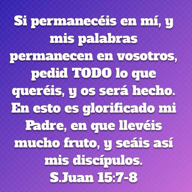 Para poder pedir a Dios y que mi oración sea contestada es necesario que yo permanezca en Jesus y que sus palabras permanezcan en mi. Porque separados de Dios NADA podemos hacer.