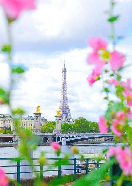 Paris, France - beautiful shot! Wonder what time of year and where this was taken.