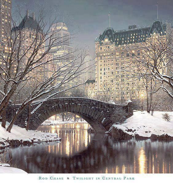Beautiful winter twilight in the Central Park, New York City, USA
