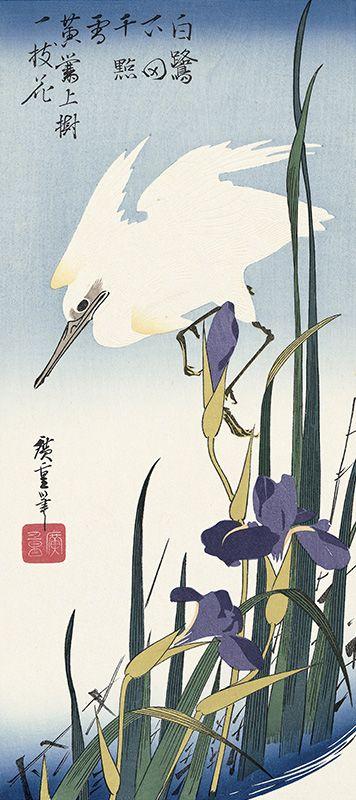 菖蒲に白鷺|歌川広重|「白鷺下田千點雪 黄鶯上樹一枝花」