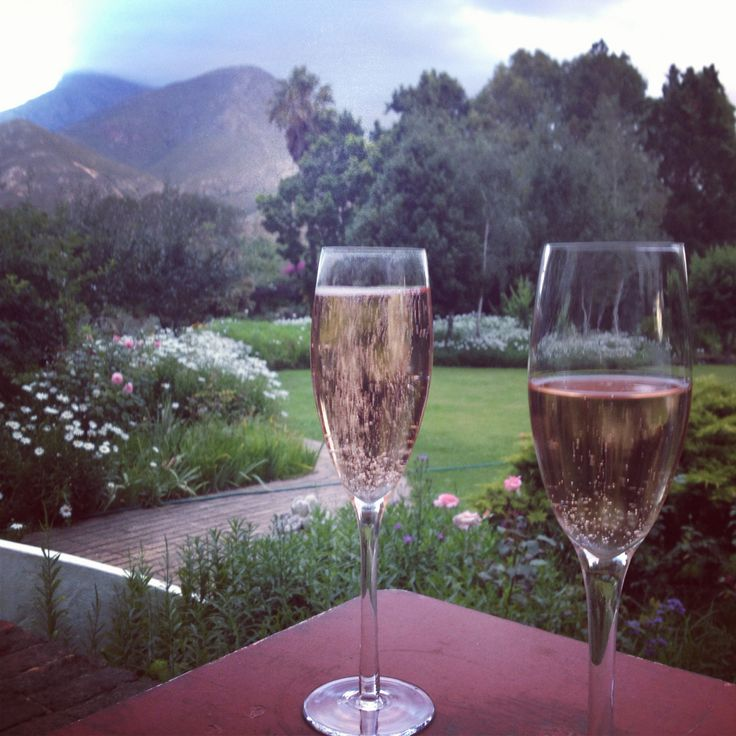 Champagne evenings at home in Greyton