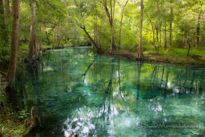 Santa Fe river, North of Florida.  Ginnie Springs Outdoors
