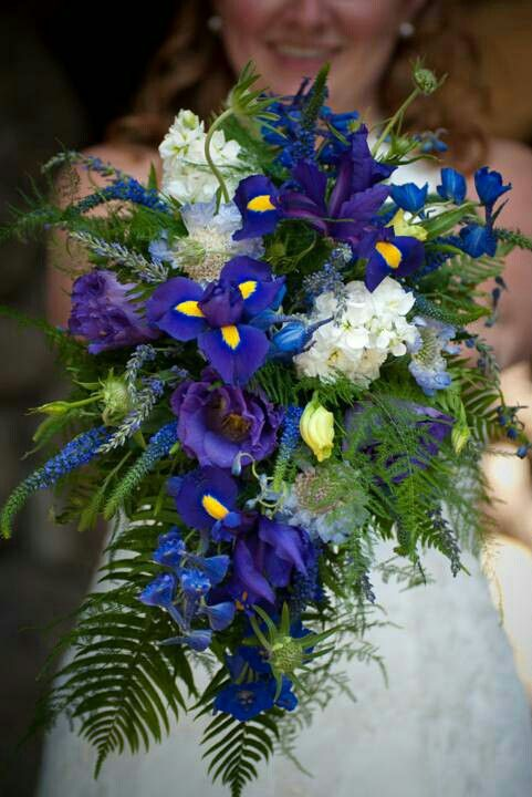 Lovely Cascading Bridal Bouquet: Blue Delphinium, Blue Veronica, Blue Scabiosa, Blue/Yellow Iris, Fresh Lavender, Purple Lisianthus + Buds, White Hydrangea & Several Varieties Of Green Fern, Additional Greenery & Foliage