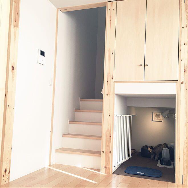 棚 Ikea 照明 犬のベッド 犬の部屋 犬のトイレ などのインテリア実例 2018 02 05 15 53 47 Roomclip ルームクリップ 犬の部屋 インテリア リビング ペットスペース