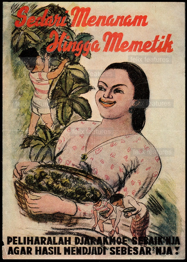 """""""From planting to picking. Treat the jatropha plant as well as possible to make the harvest as large as possible."""" .(This is a reference to the mandatory planting of jatropha for the production of machinery lubricant for the Japanese war effort.).Japanese propaganda poster issued during World War II.  COPYRIGHT:Panos Pictures /Felix Features"""