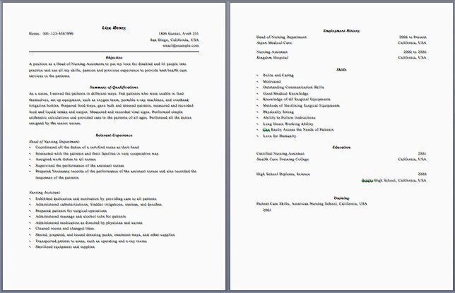 2 Page Resume Format Examples Mini Mfagency Co Resume Examples 2 Pages Examp 2 Examp Exam Good Resume Examples Resume Examples Resume Format Examples