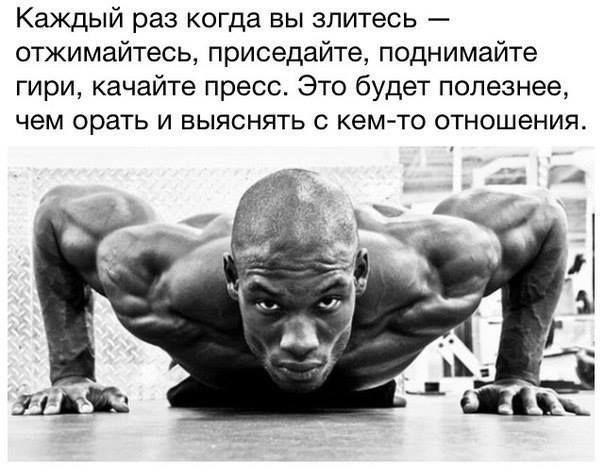 #фитнес #кроссфит #товарыдляспорта #спортивныетовары #фитнеспитание #спорт #сила #здоровыйобразжизни #тренировка #спортзал #бодибилдинг #пауэрлифтинг #фитнестовары #товарыдляфитнеса #здоровоепитание #workout #crossfit #fitness #bodyrock #sport #strong #stronger #качаемпресс #качаемноги #качаемруки #качаеммышцы #пресс #мышцы #мышца